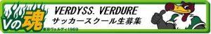 verdy-obi2